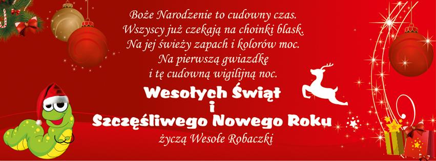 Wesołych Świąt i Szczęśliwego Nowego Roku życzą Wesołe Robaczki!