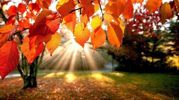 23.09.2015r. – Pierwszy dzień Astronomicznej Jesieni